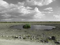 Waterhole edit