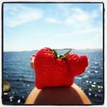 Strawberrypig
